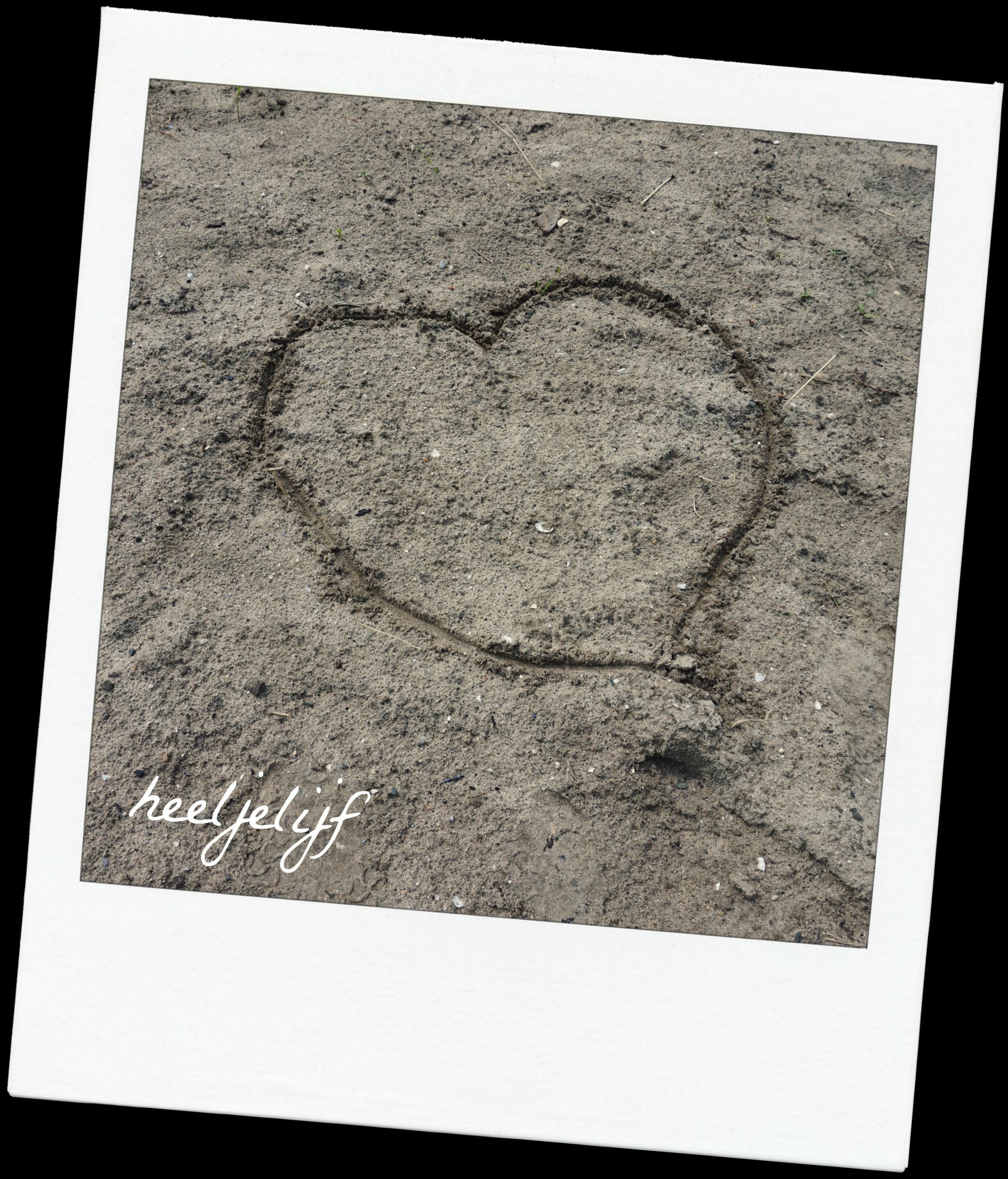 hart 1 jaar heeljelijf