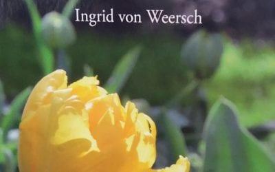 Gedichtenbundel In de zon