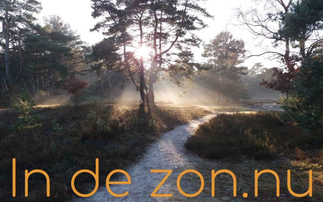 Nieuwe website In de zon